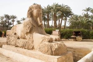 Egypt 2014 (26 of 29)